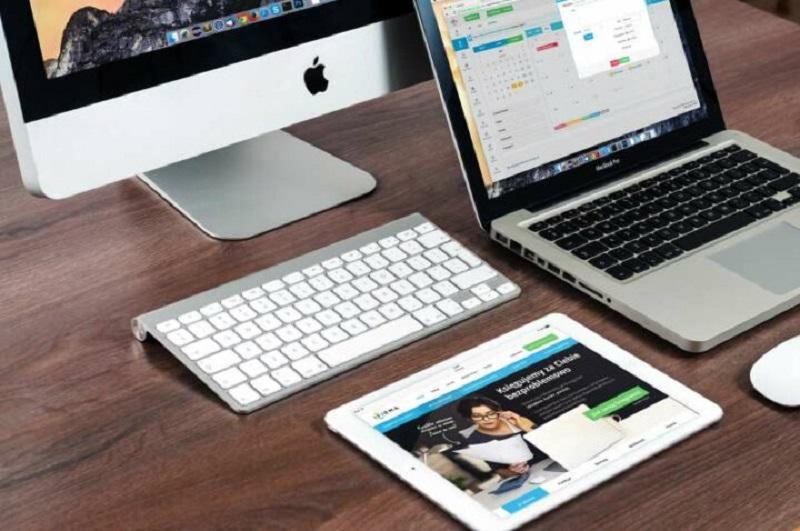 ¿Cuáles son las diferencias entre el diseño web y el desarrollo web?